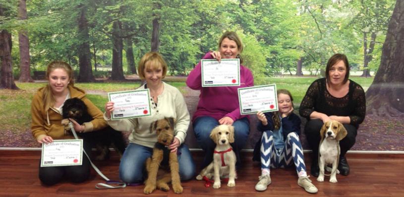 Kennelgate Puppy Training Graduates
